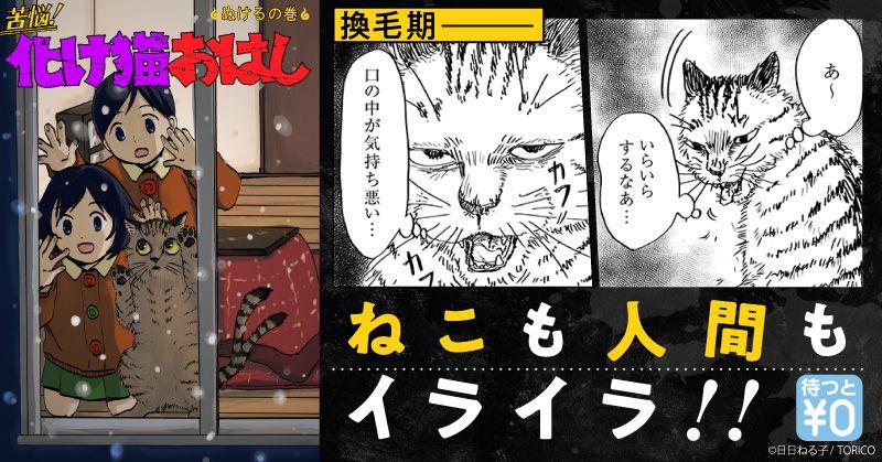 キャンペーン・特集-3